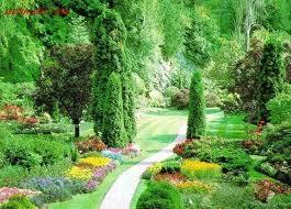 Botanik  Botanik Turizmi | Unutulmaz.net